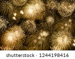 new year's eve fireworks gold... | Shutterstock . vector #1244198416