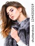 luxury fur accessory. fashion... | Shutterstock . vector #1244202019
