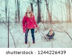 teenage girl pulling sled with... | Shutterstock . vector #1244226439