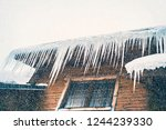 large icicles on the roof of a... | Shutterstock . vector #1244239330