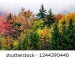 autumn mist along the highland...   Shutterstock . vector #1244390440