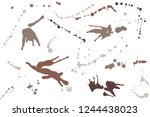 hand drawn set of sepia colored ... | Shutterstock .eps vector #1244438023