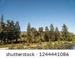 cupertino  ca   usa   october... | Shutterstock . vector #1244441086