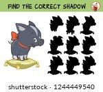funny little decorative mini... | Shutterstock .eps vector #1244449540