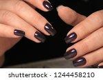 the refined beautiful female... | Shutterstock . vector #1244458210
