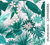 vector tropical seamless... | Shutterstock .eps vector #1244468086