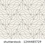 abstract geometric pattern with ... | Shutterstock .eps vector #1244485729