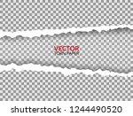 realistic torn paper with... | Shutterstock .eps vector #1244490520
