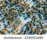 aerial top view of winter pine... | Shutterstock . vector #1244522689