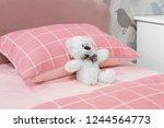 creative interior design...   Shutterstock . vector #1244564773