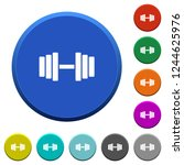 gym round color beveled buttons ... | Shutterstock .eps vector #1244625976