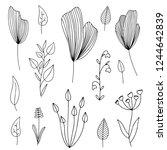 vector set of hand drawn doodle ... | Shutterstock .eps vector #1244642839