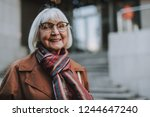 portrait of stylish old lady in ... | Shutterstock . vector #1244647240