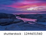 beautiful pink and purple hues... | Shutterstock . vector #1244651560