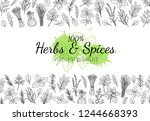 culinary herbs and spice layout ... | Shutterstock .eps vector #1244668393