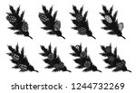 set of pine leaf with pine... | Shutterstock .eps vector #1244732269