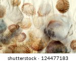 Sea Shells On Old Paper...