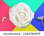 flower of plastic and dryer ... | Shutterstock . vector #1244783929