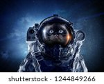 first trip to space. mixed media | Shutterstock . vector #1244849266