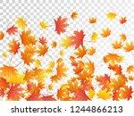 maple leaves vector  autumn... | Shutterstock .eps vector #1244866213