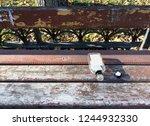 empty open glass bottle with a... | Shutterstock . vector #1244932330