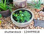 small garden stone pond | Shutterstock . vector #124499818