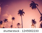 copy space of silhouette... | Shutterstock . vector #1245002233