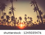 copy space of silhouette... | Shutterstock . vector #1245035476