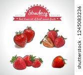strawberry. hand drawn... | Shutterstock .eps vector #1245083236