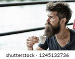 bearded guy relaxing at cafe... | Shutterstock . vector #1245132736