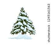 pine tree under snow icon.... | Shutterstock .eps vector #1245161563
