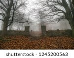 Entrance To An Old Graveyard