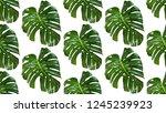 seamless pattern of leaves... | Shutterstock .eps vector #1245239923