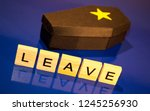 a black coffin with a yellow... | Shutterstock . vector #1245256930