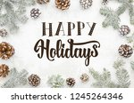 greeting card happy holidays... | Shutterstock . vector #1245264346