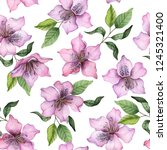 watercolor seamless pattern of... | Shutterstock . vector #1245321400