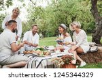nice time. group of adult... | Shutterstock . vector #1245344329