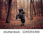 medieval warrior man on a black ... | Shutterstock . vector #1245351400