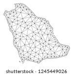 polygonal mesh map of saudi... | Shutterstock .eps vector #1245449026