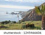 ensenada mexico coastline   Shutterstock . vector #1245466606