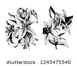 ink hand drawn flowers. can be... | Shutterstock . vector #1245475540