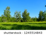 view through the green field to ... | Shutterstock . vector #1245514843