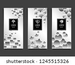 set templates for package from...   Shutterstock .eps vector #1245515326