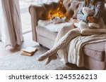 cold autumn or winter weekend... | Shutterstock . vector #1245526213