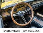 paaren im glien  germany   may... | Shutterstock . vector #1245539656