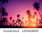 copy space of silhouette... | Shutterstock . vector #1245628069