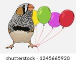 taeniopygia guttata  zebra... | Shutterstock .eps vector #1245665920