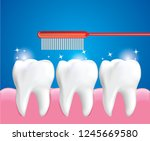 teeth brushing for cleaning... | Shutterstock .eps vector #1245669580