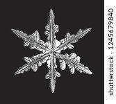 white snowflake isolated on... | Shutterstock .eps vector #1245679840