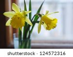 Yellow Daffodil Flowers In Vas...